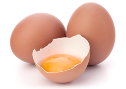Production of Eggs and Egg Product